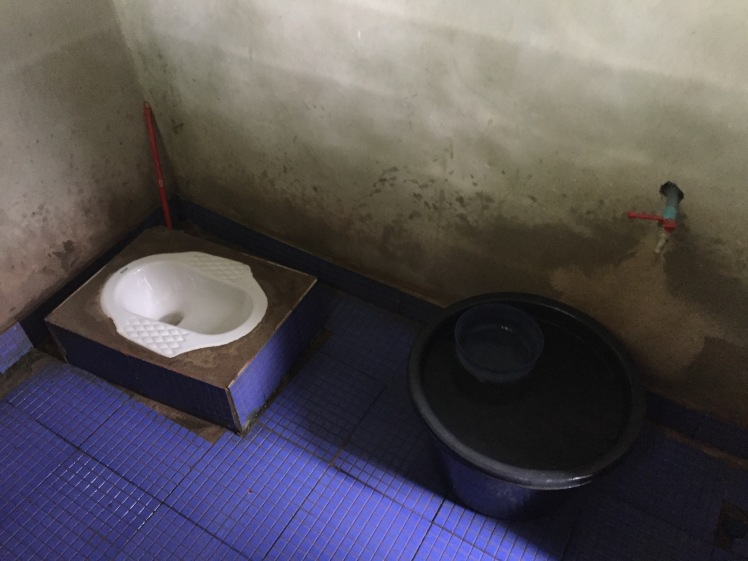 Laos Toilet