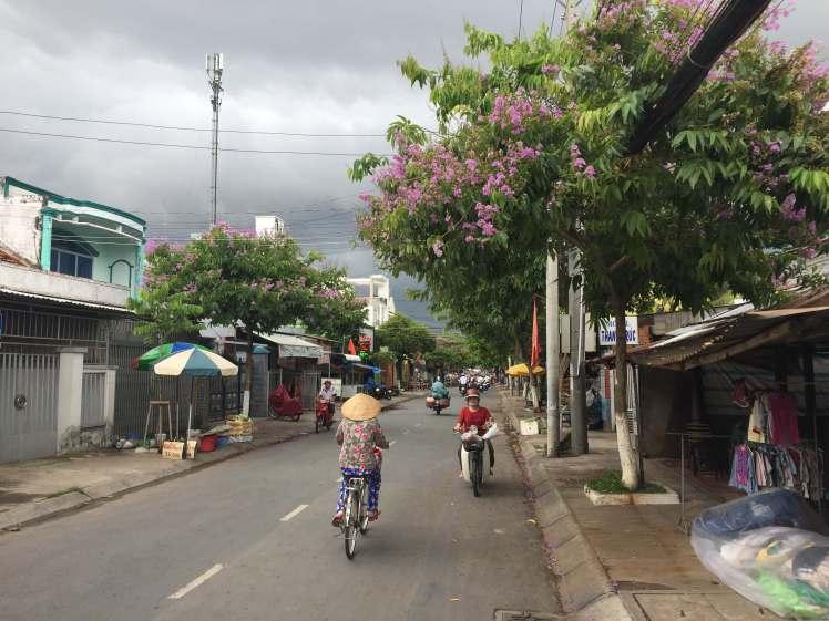 A Woman Riding a Bike in Ben Tre, Vietnam