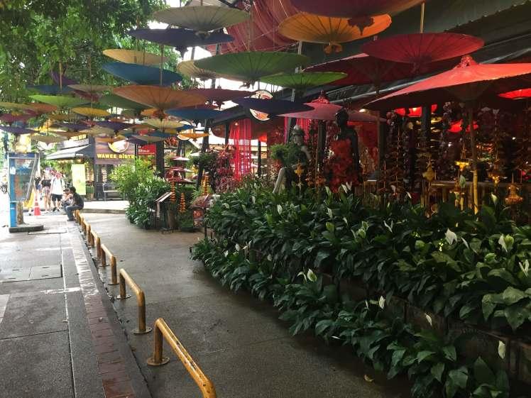 A Café in Chiang Mai, Thailand