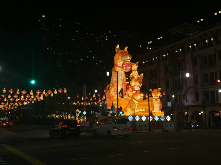 Chinese New Year Decoration in Singapore