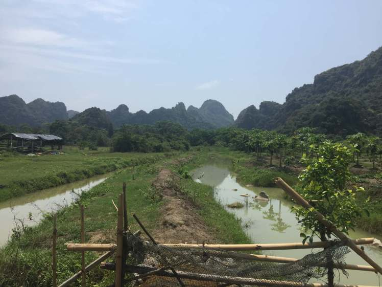 Farms on Cat Ba Island, Vietnam