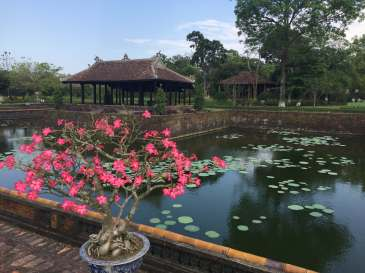 Beautiful scenery in the Citadel of Huế.