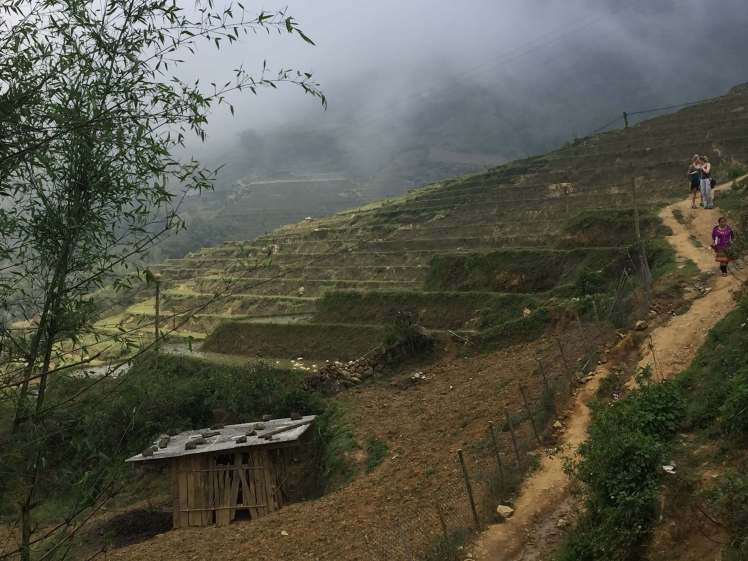 Foggy Rice Terraces in Sapa, Vietnam