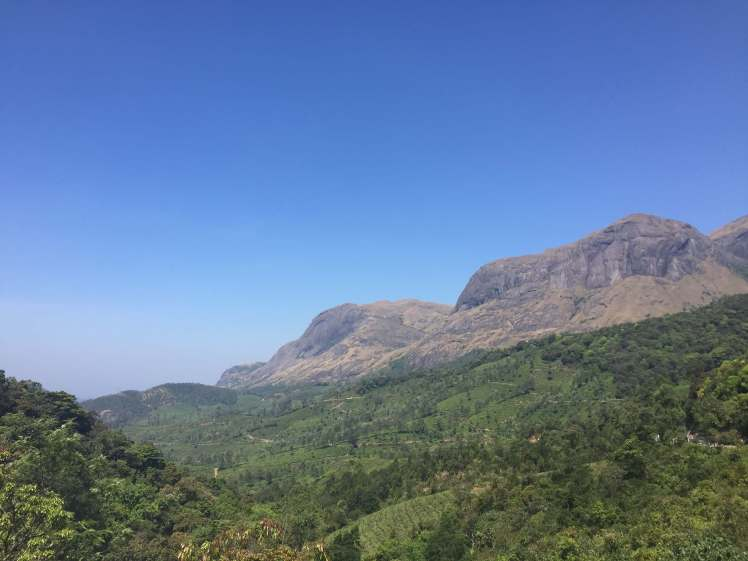 Mountains near Munnar, Kerala, India