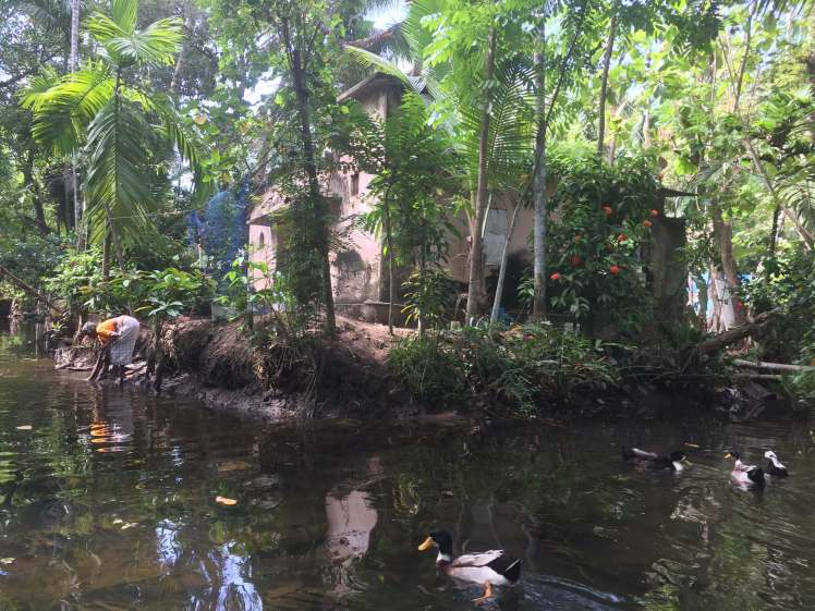 Village Life in the Backwaters of Kerala, India
