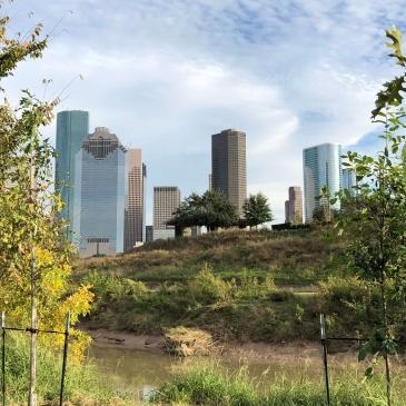 Houston Skyline and Buffalo Bayou