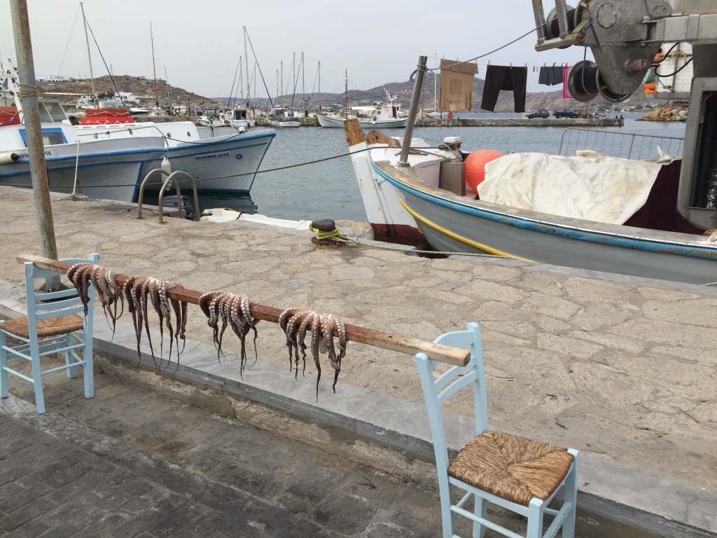 Octopus Drying in Naousa, Paros, Greece