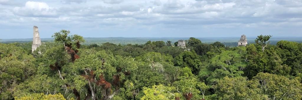 View of Tikal, Guatemala