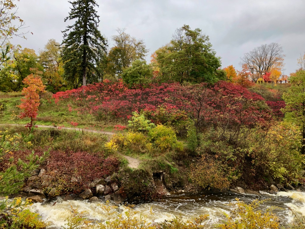 Fall Foliage Along Bear River, Petoskey, Michigan, USA